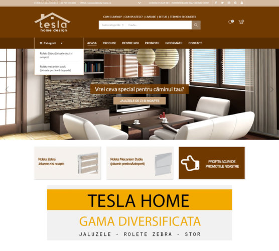 Tesla home design